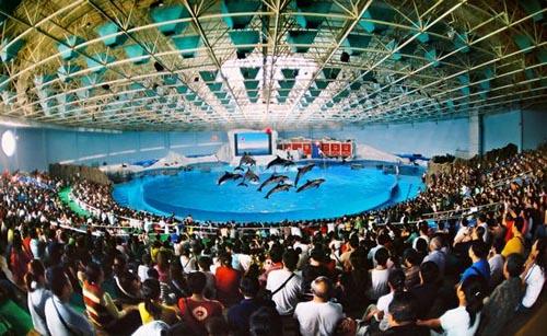2012中国国内旅游交易会在青岛隆重开幕