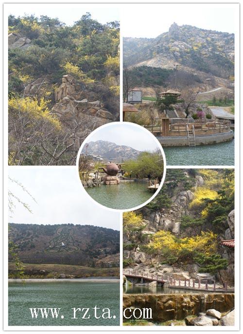 日照旅游直通车之日照市旅行社协会组织考察青岛茶山风景区